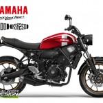 ความเป็นไปได้ของ Yamaha XSR250/300