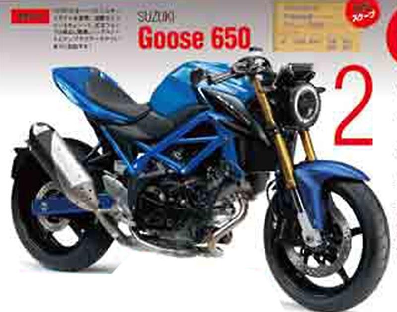 goose650.jpg